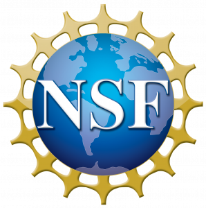 Opportunity in Statistics Research with National Science Foundation