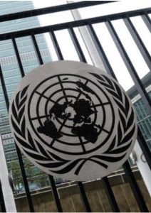 City Bar Association Urges UN to Formally Recognize Human Right to a Healthy Environment